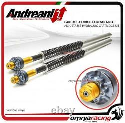 Andreani Yamaha T Max 500 2004 0407 Adjustable Fork Cartridge
