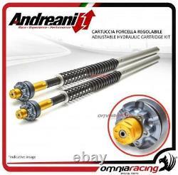 Andreani Yamaha T Max 500 2008 0810 Adjustable Fork Cartridge