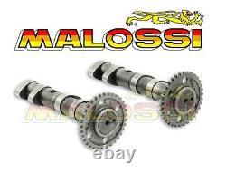Kit Double Camshaft Malossi Yamaha Tmax 500 T-max Power Cam Neuf 5913783