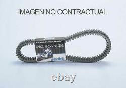 Pln248086 Polini Polini Belt Drive Yamaha T-max 530 (248086)