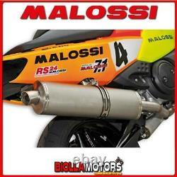 3214011 POT D'ÉCHAPPEMENT MALOSSI MAXI WILD LION con DB KILLER YAMAHA T MAX 500