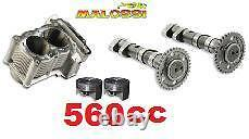 Double Cylindre Power Cam Malossi Yamaha T-max Tmax 500
