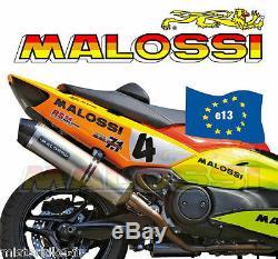 Pot D'échappement Complet MALOSSI Maxi Wild Lion YAMAHA T-MAX 500 de 2008 à 2011